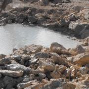 Coral Excavation (Tahiti)
