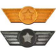 Aviation Wings Badge