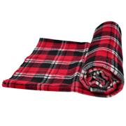 Picnic Blanket A