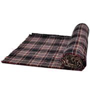 Picnic Blanket D