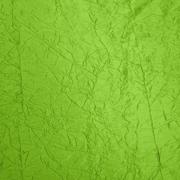 Runner Crush Taffeta Lime Green
