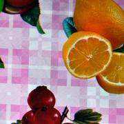 Spaza Plastic Overlay A