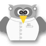 Mad Scientist Owl Grey