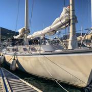 42 Pelican - MON42-0427